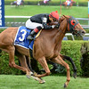 Abaco wins the 2014 Ballston Spa at Saratoga.<br /> Coglianese Photos/Lauren King