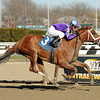Princess of Sylmar wins the Cat Cay Stakes.<br /> Coglianese Photos