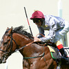 The Wow SIgnal, Frankie Dettori up wins the Coventry Stakes, Royal Ascot, Ascot Race Course, England, 6/17/14 photo by Mathea Kelley