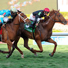 Reload wins the 2014 Canadian Turf Stakes at Gulfstream Park.<br /> Coglianese Photos.