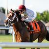 Mshawish wins the 2014 El Prado Stakes at Gulfstream Park.<br /> Coglianese Photos/Kenny Martin