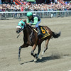 Myfourchix wins the Seeking the Ante at Saratoga 8/24/2014.<br /> Coglianese Photos/Chelsea Durand