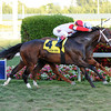 Storming Inti Wins Kitten's Joy in Thriller<br /> Coglianese Photos