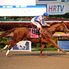 Lea wins the Donn Handicap 2/9/2014.<br /> Coglianese Photos