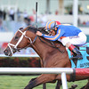 Gala Award wins the 2014 Palm Beach at Gulfstream Park.<br /> Coglianese Photos/Kenny Martin