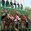 Molly Pitcher Monmouth Park Start Chad B. Harmon