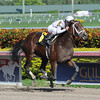Constitution - Maiden Win, January 11, 2014.<br /> Coglianese Photos/Bob Coglianese