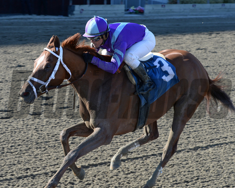 Princess of Sylmar wins the Cat Cay Stakes<br /> Coglianese Photos/Chelsea Durand