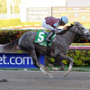Spot wins the 2014 Swale Stakes at Gulfstream Park.<br /> Coglianese Photos/Leslie Martin