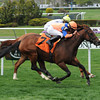 Waterway Run wins the Beaugay Stakes