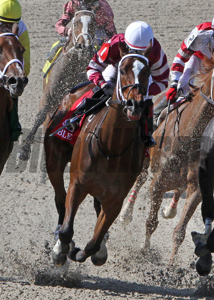 3/29/2014  -  Jockey Rosie Napravnik (white cap) aboard Untapable turn for home and goes on to win the 48th running of the Fair Grounds Oaks at Fair Grounds  Hodges Photography / Alexander Barkoff