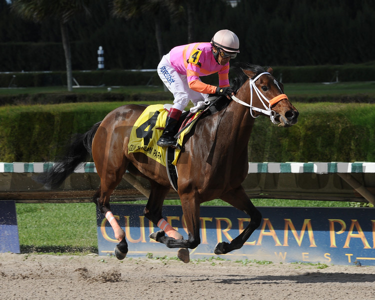 Money'soncharlotte wins the 2014 Hut Hut Stakes at Gulfstream Park West.<br /> Coglianese Photos/Lauren King