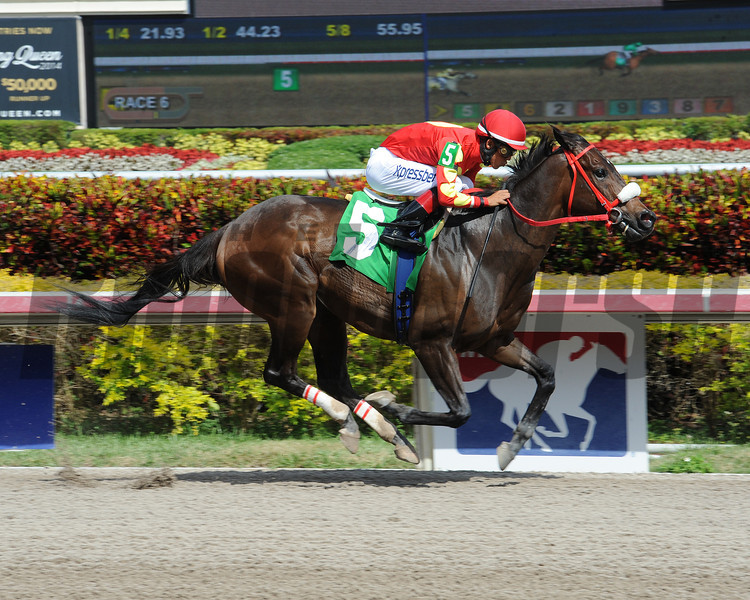 Evolution Rocks wins the 6th Race at Gulfstream Park on March 12, 2014. <br /> Coglianese Photo