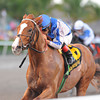 Lea wins the 2014 Hal's Hope.<br /> Coglianese Photos/Kenny Martin