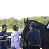 Tonalist wins the 2014 Jockey Club Gold Cup at Belmont Park.<br /> Coglianese Photos