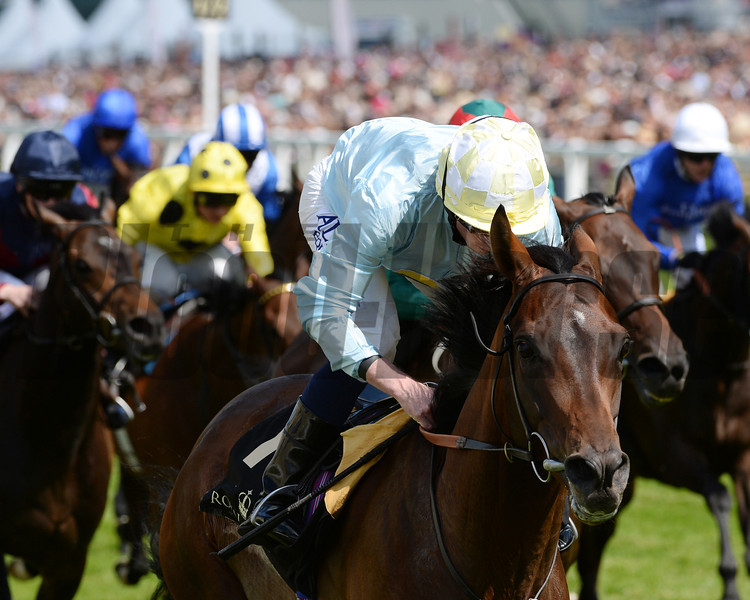 Arab Spring, Ryan Moore up, wins the Duke of Edinburgh Stakes, Royal Ascot, Ascot Race Course, England, 6/21/14 photo by Mathea Kelley,