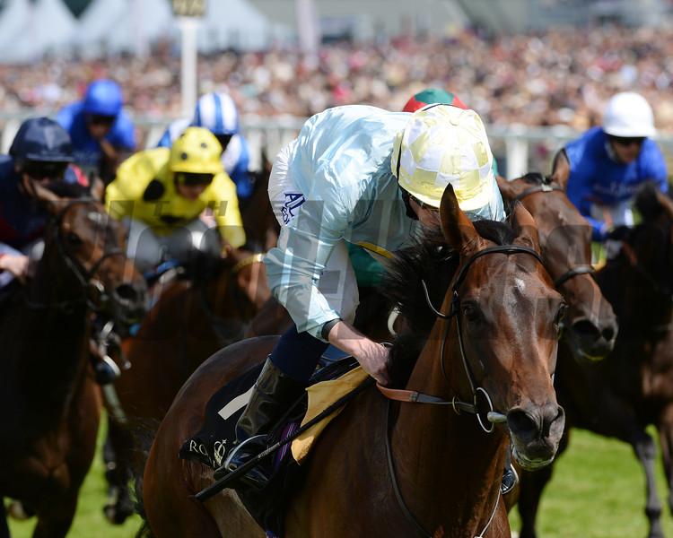 Arab Spring, Ryan Moore up, wins the Duke of Edinburgh Stakes, Royal Ascot, Ascot Race Course, England, 6/21/14 photo by Mathea Kelley,