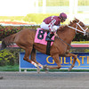 Lil Red Cozette - AOC March 7, 2014 Gulfstream Park. <br /> Coglianese Photos