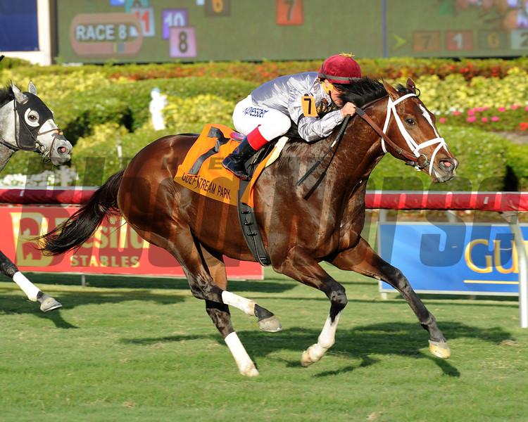 Mshawish wins the 2014 El Prado Stakes at Gulfstream Park.<br /> Coglianese Photos/Lauren King