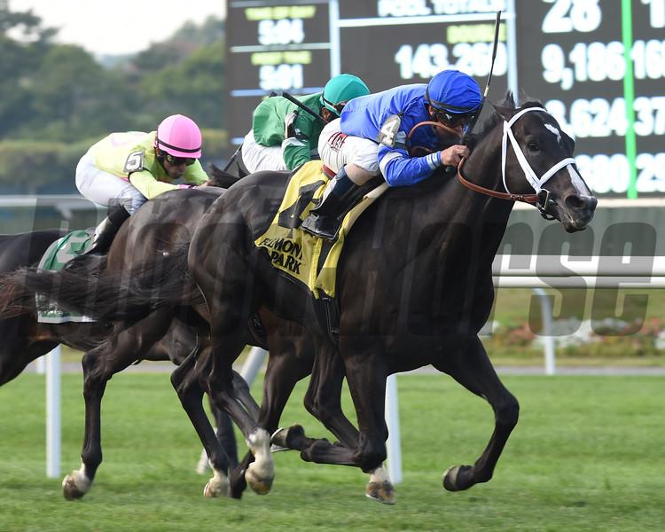 Imperia wins the Pilgrim Stakes 9/28.2014.<br /> Coglianese Photos