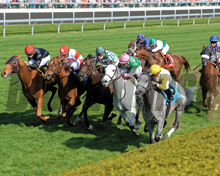 Caption: Hard Not to Like with Javier Castellano up (on rail, #9) wins the Jenny Wiley (gr. I).<br /> Undercard stakes at Keeneland near Lexington, Ky., on April 12, 2014.<br /> image196<br /> Photo by Anne M. Eberhardt