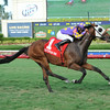 Best Plan Yet wins the 2014 Forty Niner Stakes at Saratoga.<br /> Coglianese Photos/Leslie Martin