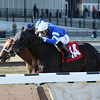 Romansh wins the 2014 Excelsior at Aqueduct.<br /> Coglianese Photos/Joe Labozzetta