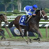 Antipathy wins the Shuvee Stakes July 27, 2014.<br /> Coglianese Photos