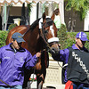 Mucho Macho Man Schooling at Gulfstream Park on January 16, 2014.<br /> Coglianese Photos