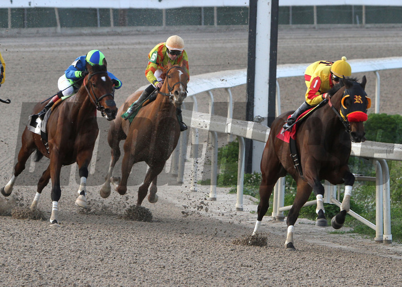 Heitai, right, heads into the Fair Grounds stretch to win the Duncan F. Kenner Stakes, Saturday March 8, 2014. Jockey Diego Saenz won the $100,000 Stake race gate to wire. Delaunay finished 2nd and Lemon Drop Dream was third. Alexander Barkoff / Hodges Photography