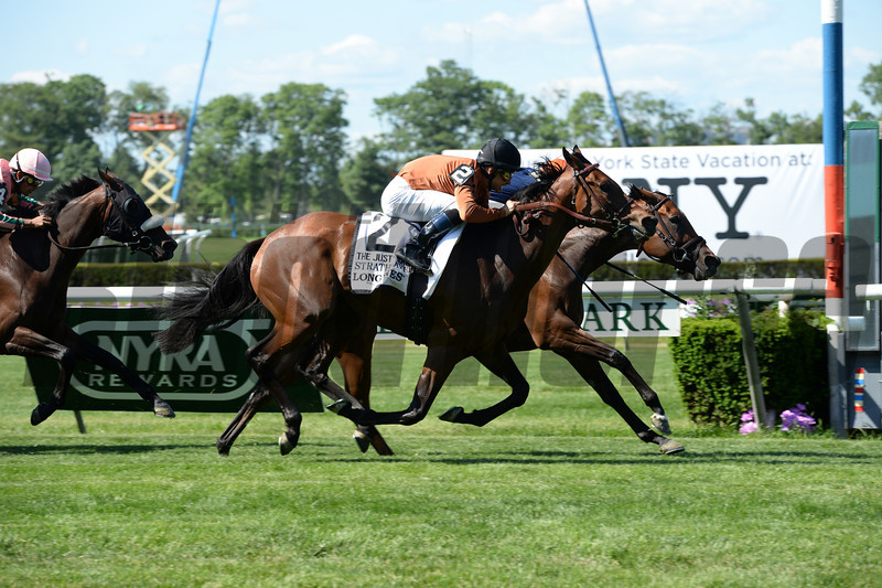 Coffee Clique wins the 2014 Longines Just a Game Stakes at Belmont Park.<br /> Coglianese Photos/Chelsea Durand