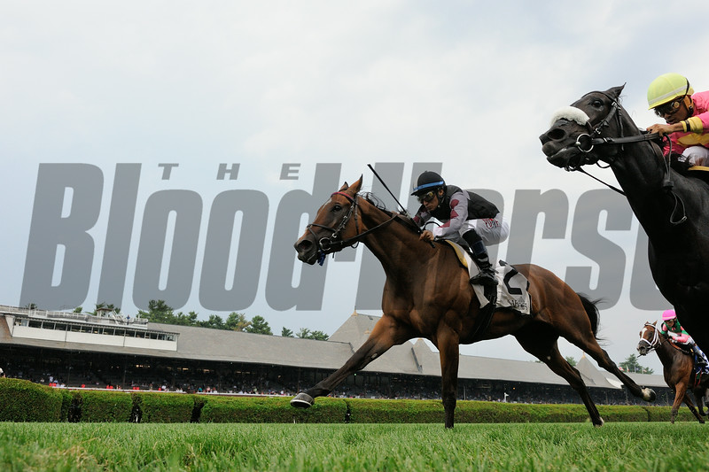 Daring Dancer wins the 2014 Lake George Stakes at Saratoga.<br /> Coglianese Photos/Adam Mooshian