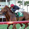 Reload wins the 2014 Canadian Turf Stakes at Gulfstream Park.<br /> Coglianese Photos/Lauren King