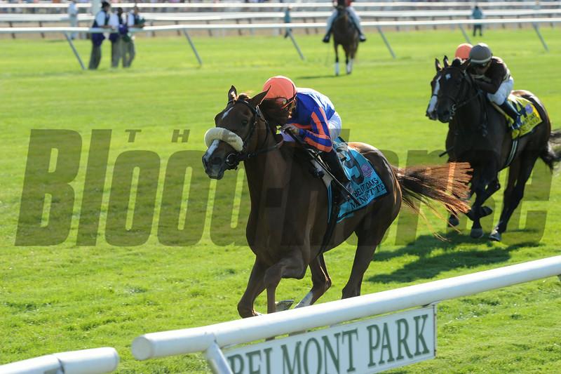 Minorette wins the 2014 Belmont Oaks.<br /> Coglianese Photos/Adam Mooshian