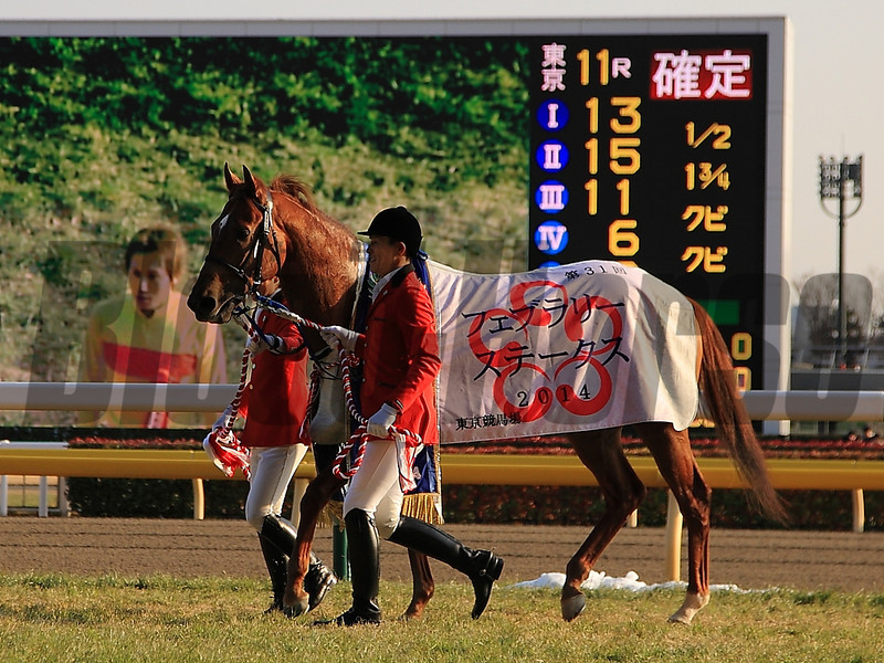 Copano Rickey wins the February Stakes in Japan. 2/23/2014<br /> Naoji Inada Photo