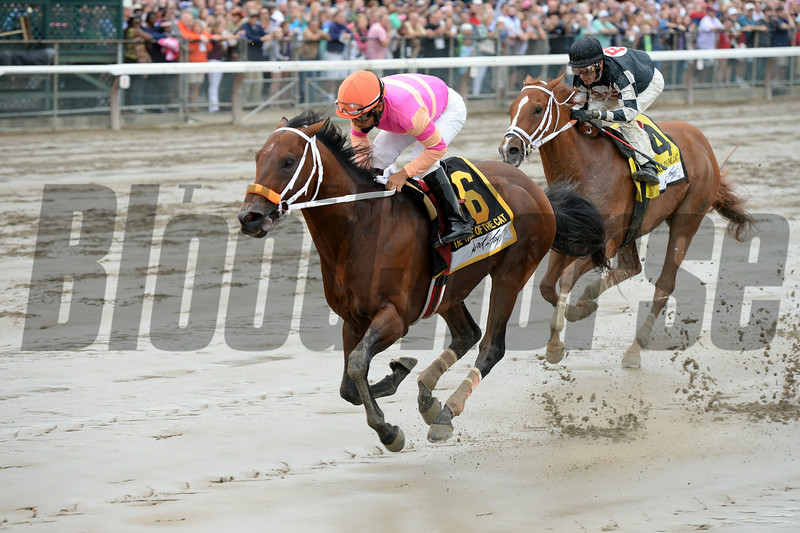 Bern Identity wins the 2014 Tale of the Cat Stakes at Saratoga.<br /> Coglianese Photos/Chelsea Durand