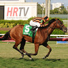 Little Mike wins the 2014 Flying Pidgeon Stakes at Gulfstream Park.<br /> Coglianese Photos/Natalie Fawkes