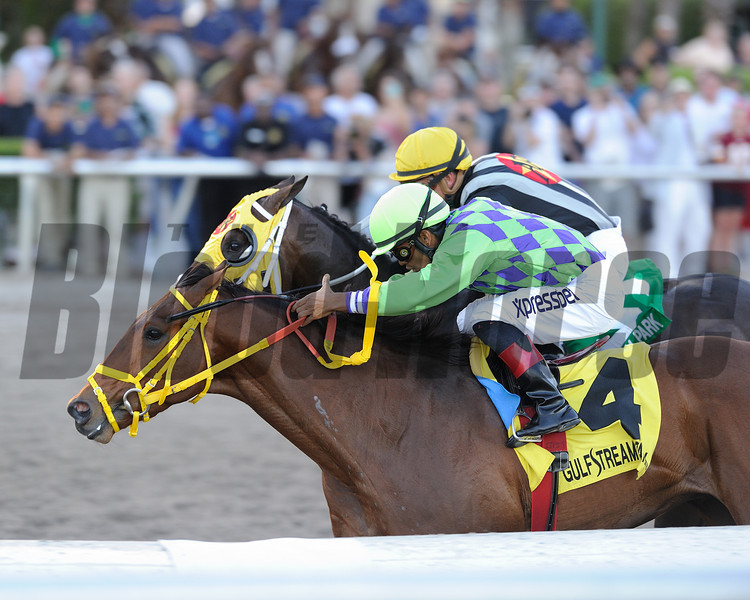 Wildcat Red wins the 2014 Fountain of Youth at Gulfstream Park.<br /> Coglianese Photos/Lauren King