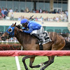 Anjaz wins the 2014 Orchid Stakes at Gulfstream Park.<br /> Coglianese Photos/Lauren King