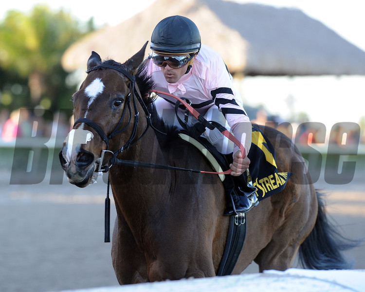 Devil's Cave wins the Sabin Stakes in track record time at Gulfstream Park.<br /> Coglianese Photos/Kenny Martin