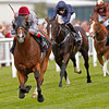 Olympic Glory wins the 2014 JLT Lockinge Stakes.<br /> Trevor Jones Photo