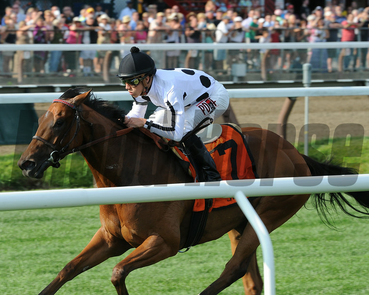 Stars Above Me wins the 2014 Coronation Cup Stakes at Saratoga.<br /> Coglianese Photos/Adam Mooshian