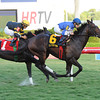 Summer Front wins the 2014 Ft. Lauderdale Stakes.<br /> Coglianese Photos/Bob Coglianese