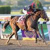 Tonalist wins the 2014 Jockey Club Gold Cup at Belmont Park.<br /> Coglianese Photos/David Alcosser