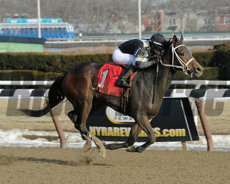 Joint Return wins the 2014 Busher Stakes at Aqueduct.<br /> Coglianese Photos