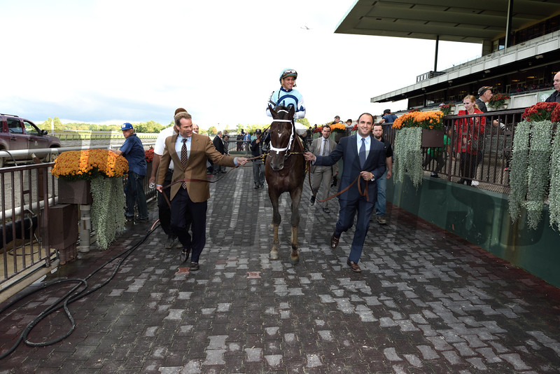 Daredevil wins the 2014 Champagne Stakes at Belmont Park.<br /> Coglianese Photos