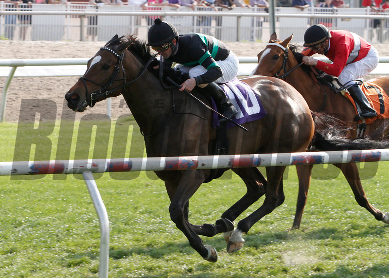 I Dazzle, left, with Robby Albarado aboard, wins the 39th running of the Red Camelia Stakes at the Fair Grounds Race Course and Slots in New Orleans, LA, Saturday, March 22, 2014. The $60,000 stake for four year old fillies and mares was run at about 1 1/16 miles on the turf in 1:46.19. Finishing second was Tensas Harbor and Ladyzarbridge was third. The victory gave Albarado his fourth win of five for the day.<br /> Photo by Jamie Hernandez / Hodges Photography