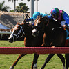 Yes I'm Lucky captures the Mr. Light Stakes at Gulfstream Park in Florida. <br /> Kenny Martin/Coglianese Photo