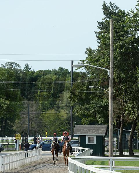 Wicked Strong - Saratoga, August 16, 2014.<br /> Coglianese Photos/Susie Raisher
