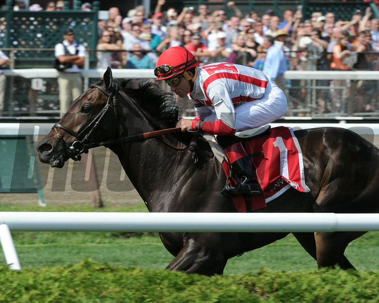 Startup Nation wins the 2014 With Anticipation Stakes at Saratoga.<br /> Coglianese Photos/Adam Mooshian
